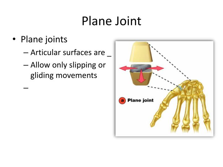 Plane Joint