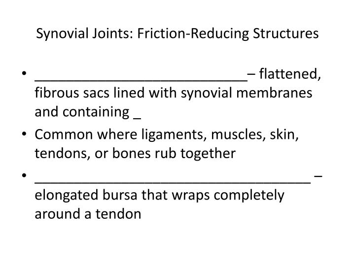 Synovial Joints: Friction-Reducing Structures