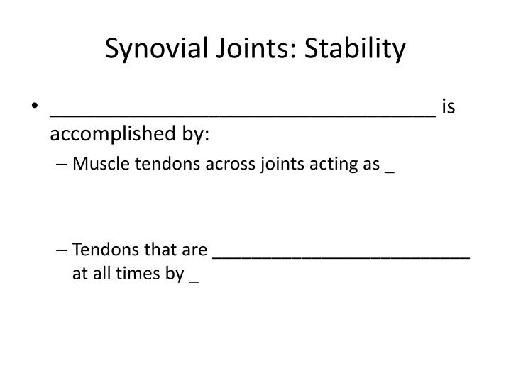 Synovial Joints: Stability