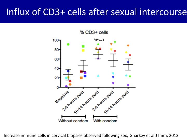 Influx of CD3+ cells after sexual intercourse