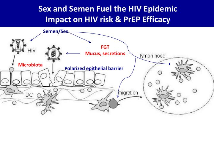 Sex and Semen Fuel the HIV Epidemic