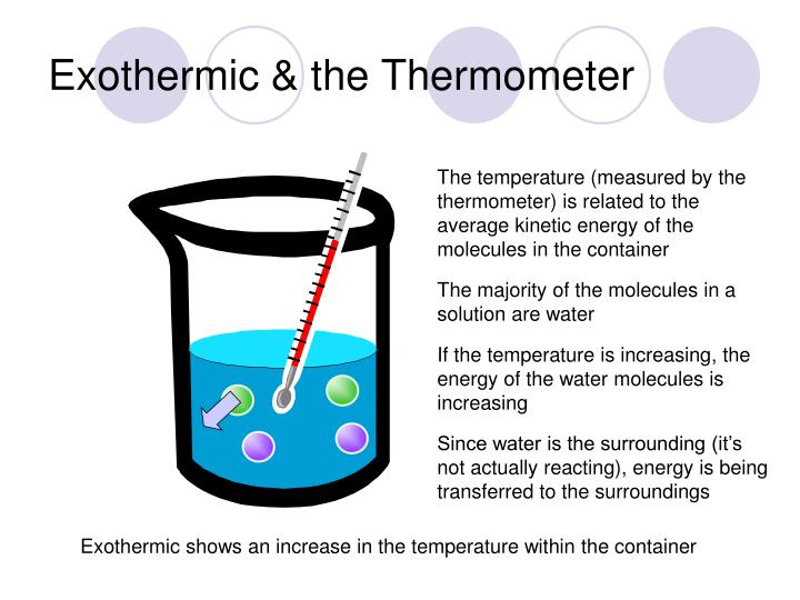 Exothermic & the Thermometer