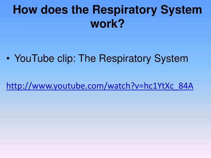 How does the Respiratory System work?