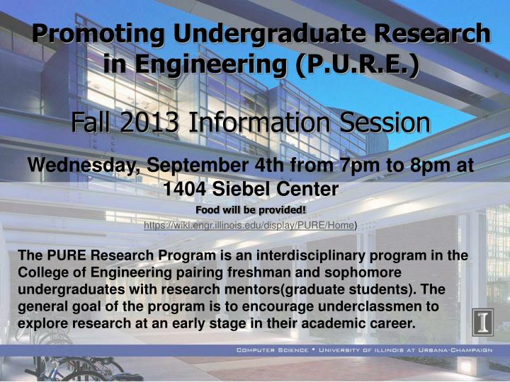 Promoting Undergraduate Research in Engineering