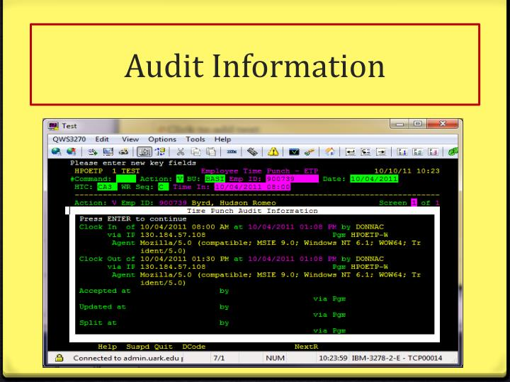 Audit Information