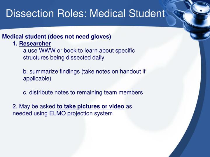Dissection Roles: Medical Student