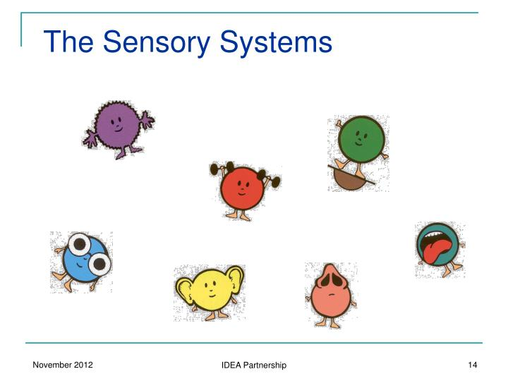 The Sensory Systems