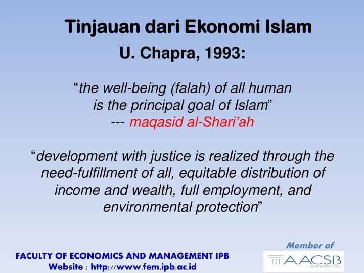 Tinjauan dari Ekonomi Islam