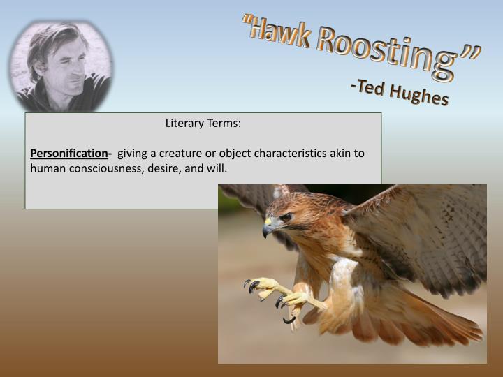 """""""Hawk Roosting"""""""
