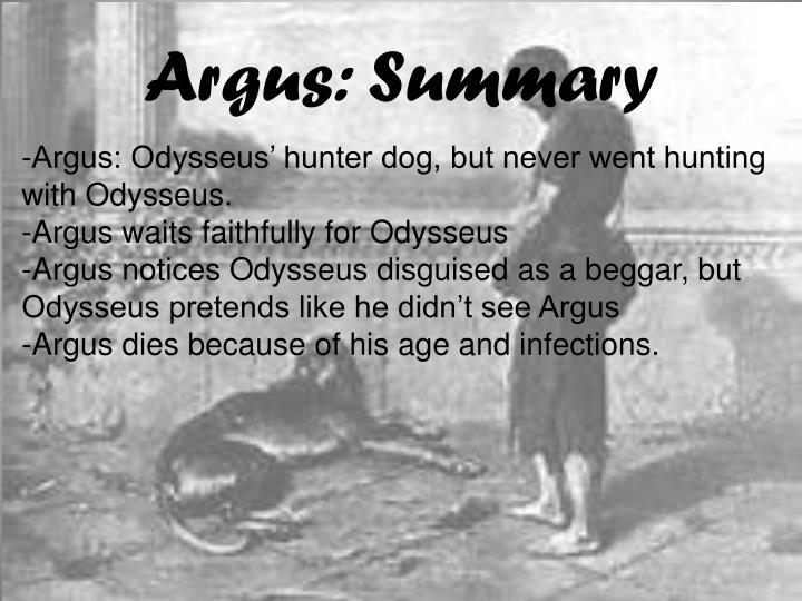 Argus: Summary