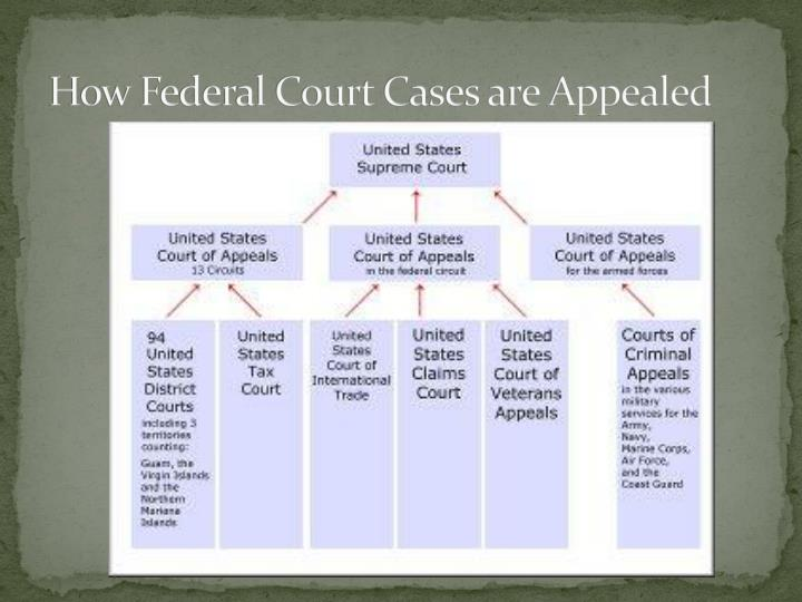 How Federal Court Cases are Appealed