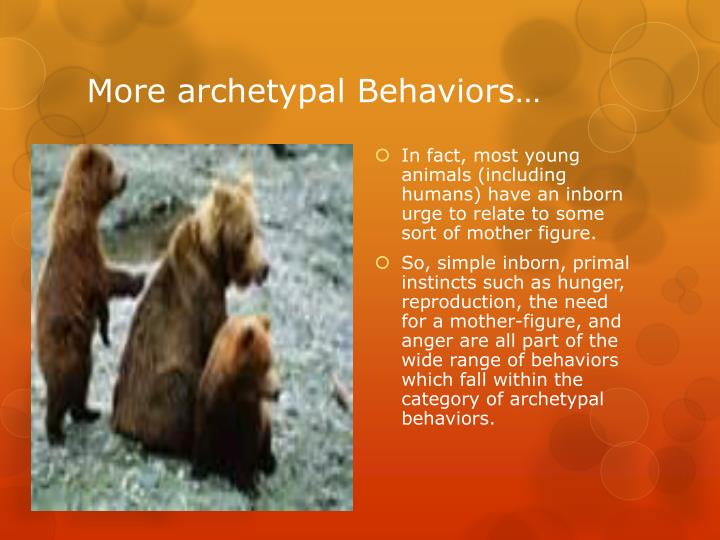 More archetypal Behaviors…