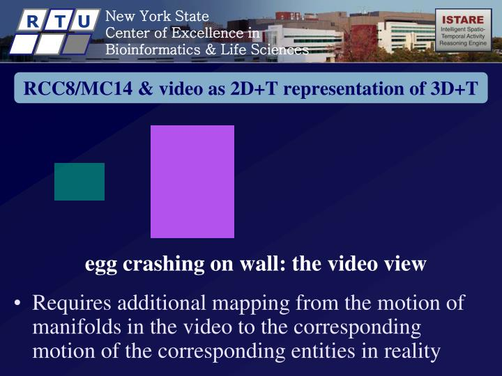 RCC8/MC14 & video as 2D+T representation of 3D+T