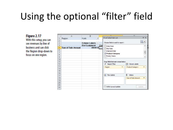 "Using the optional ""filter"" field"