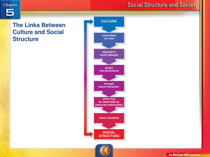 The Links Between Culture and Social Structure
