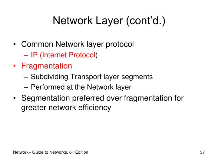 Network Layer (cont'd.)
