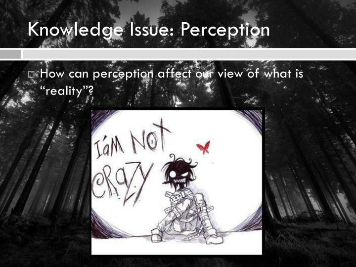 Knowledge Issue: Perception