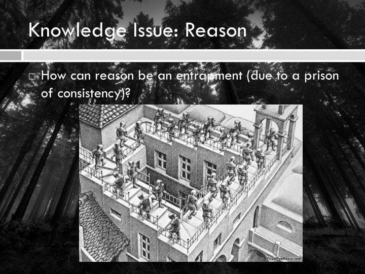 Knowledge Issue: Reason