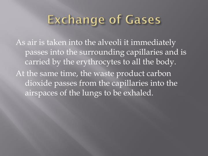 Exchange of Gases