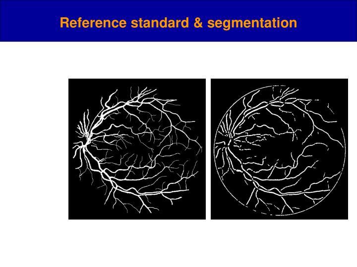 Reference standard & segmentation