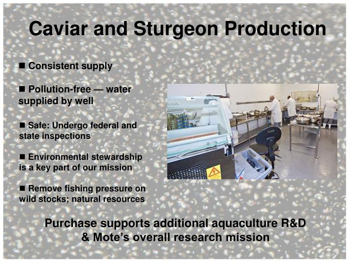 Caviar and Sturgeon Production