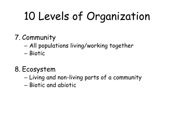 10 Levels of Organization