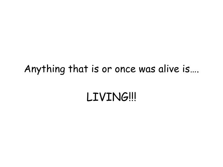 Anything that is or once was alive is….