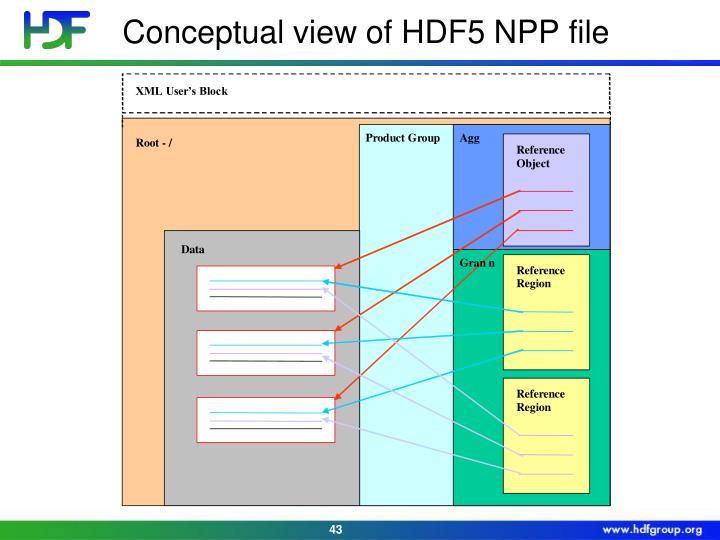 Conceptual view of HDF5 NPP file