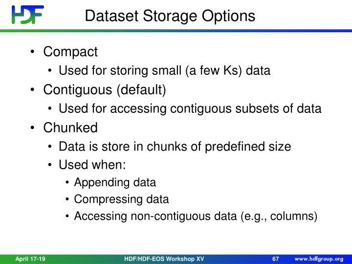 Dataset Storage Options