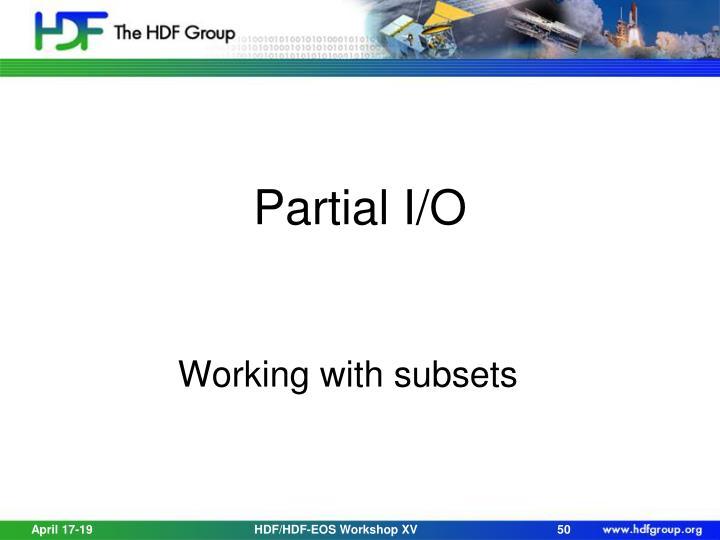 Partial I/O