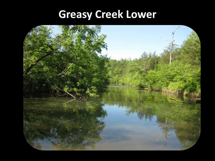 Greasy Creek Lower