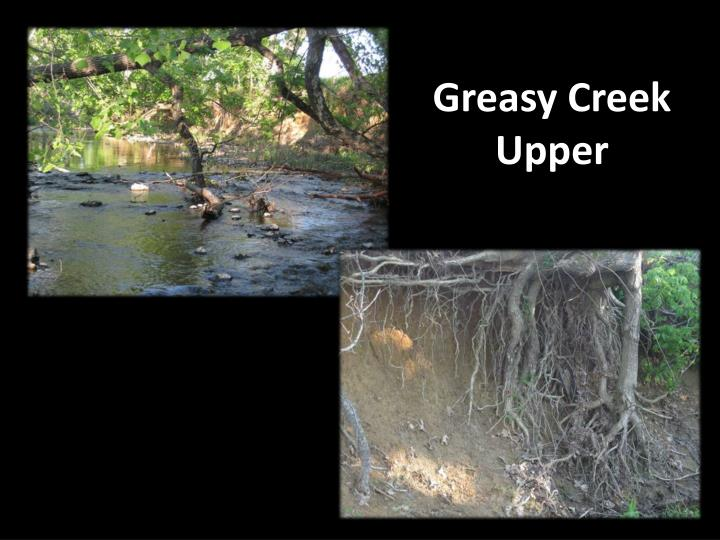 Greasy Creek Upper