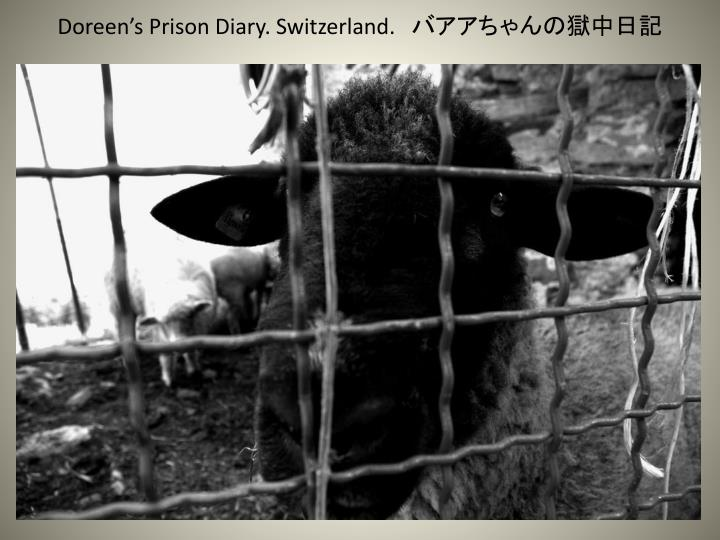 Doreen's Prison Diary. Switzerland.