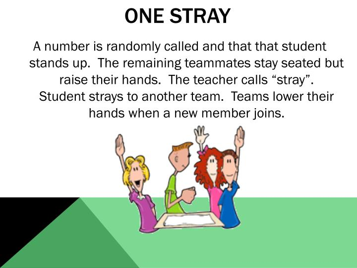 One Stray