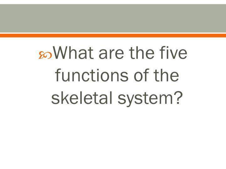 What are the five functions of the skeletal system?