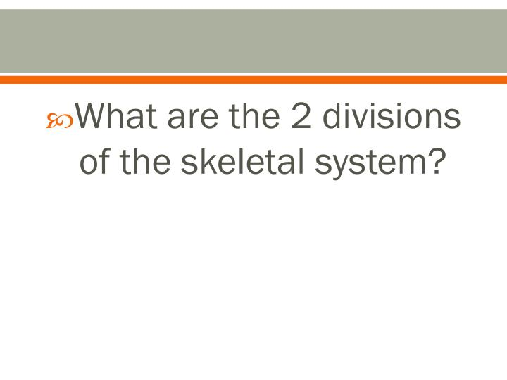 What are the 2 divisions of the skeletal system?