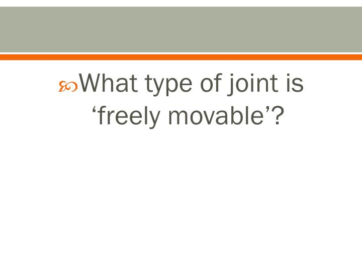 What type of joint is 'freely movable'?