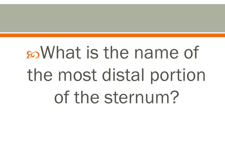 What is the name of the most distal portion of the sternum?