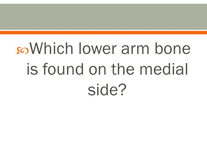 Which lower arm bone is found on the medial side?