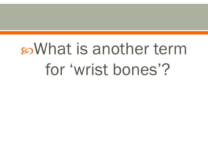 What is another term for 'wrist bones'?