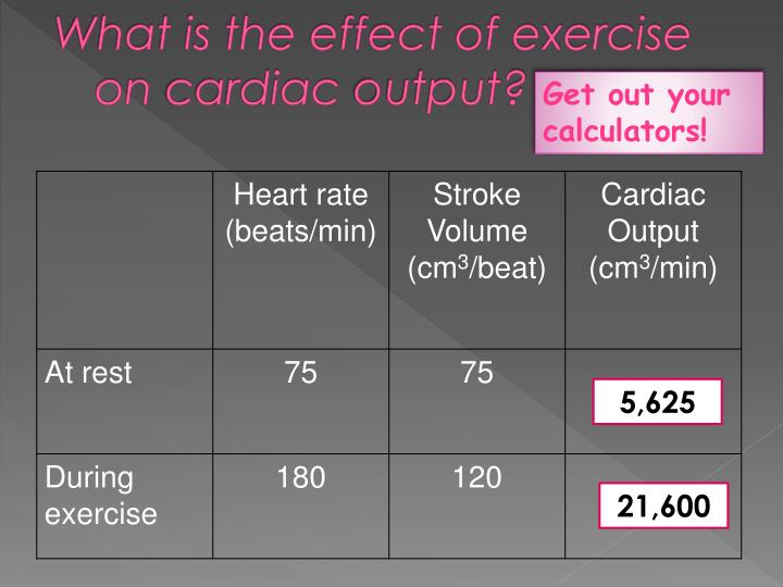What is the effect of exercise on