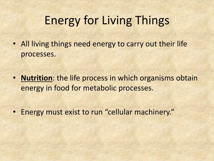 Energy for Living Things