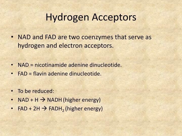 Hydrogen Acceptors