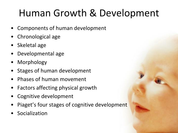 Human Growth & Development