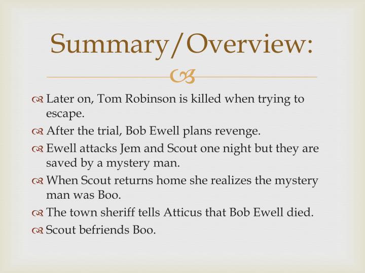 Summary/Overview: