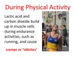 during physical activity4