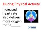 during physical activity9