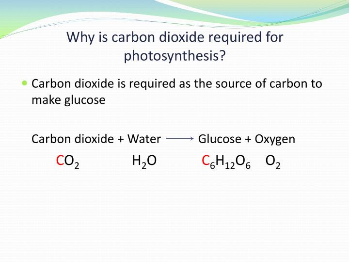 Why is carbon dioxide required for photosynthesis?