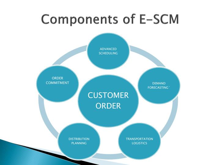 Components of E-SCM