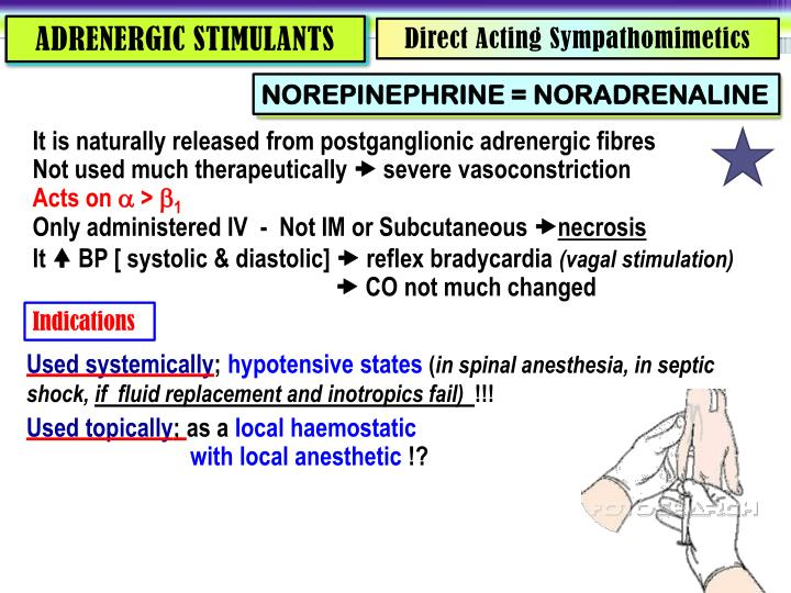 ADRENERGIC STIMULANTS